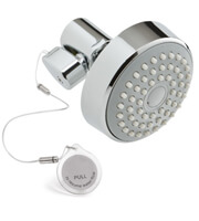 Example of a rebate qualifying shower fixture